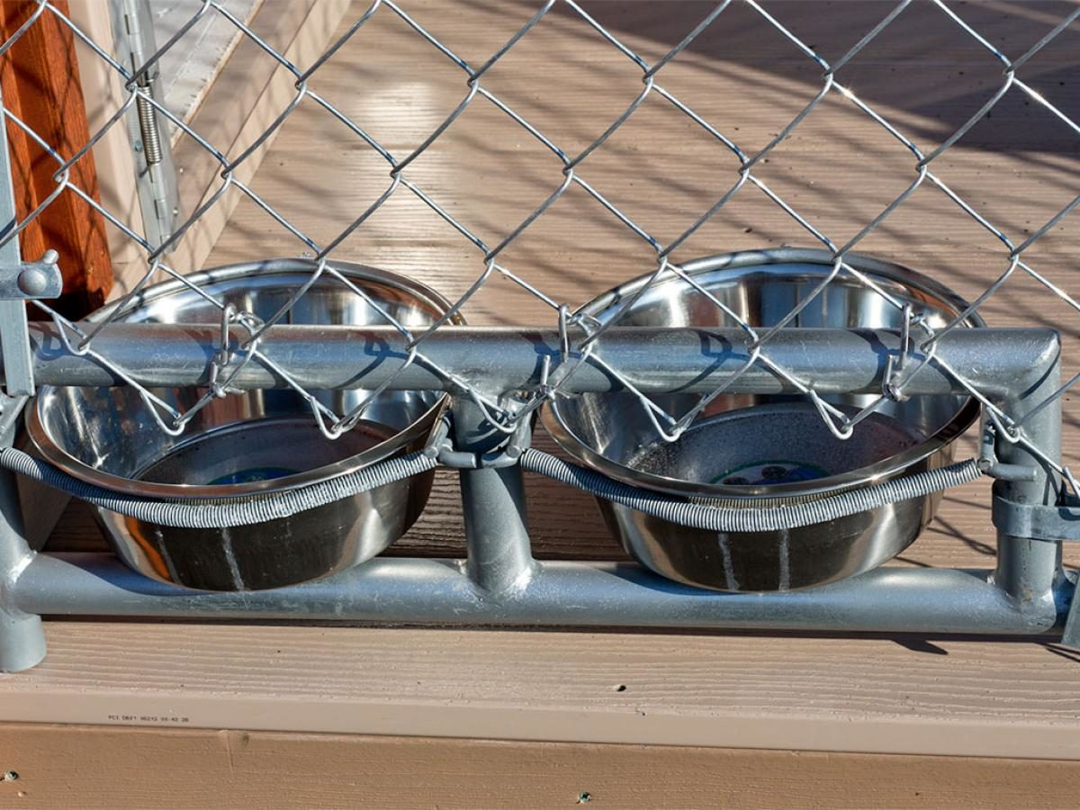 puppy kennels feeders