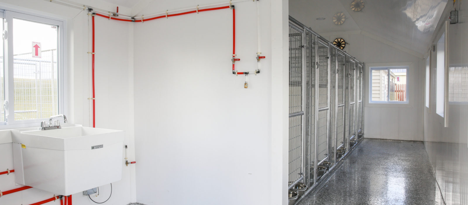 dog kennels interior with wash