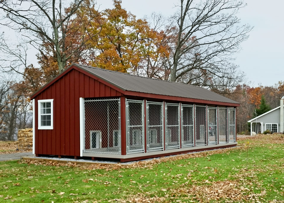 dog kennels for trainers 14x32 large dog kennel (1)