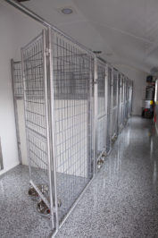 15x36 dog kennel