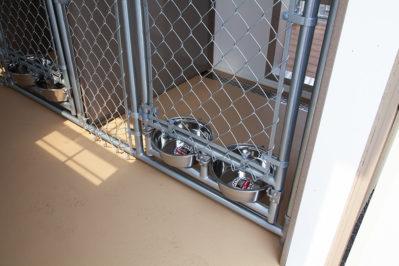 12x16 dog kennel