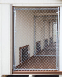 12x16 dog kennel boxes