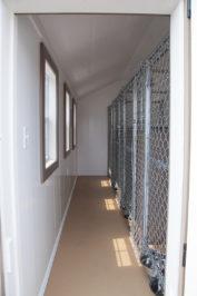 12x16 dog kennel interior