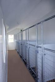 12x22 dog kennel