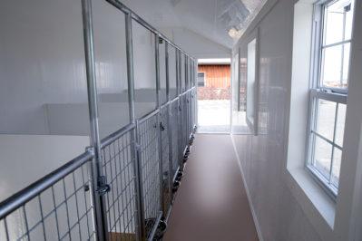 12x22 dog kennel interior