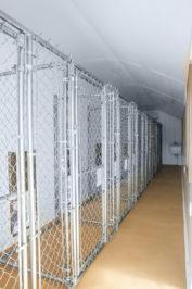 12x32 dog kennel