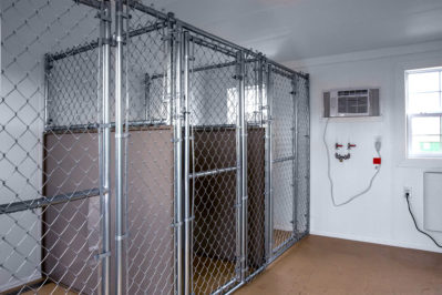 12x36 dog kennel interior