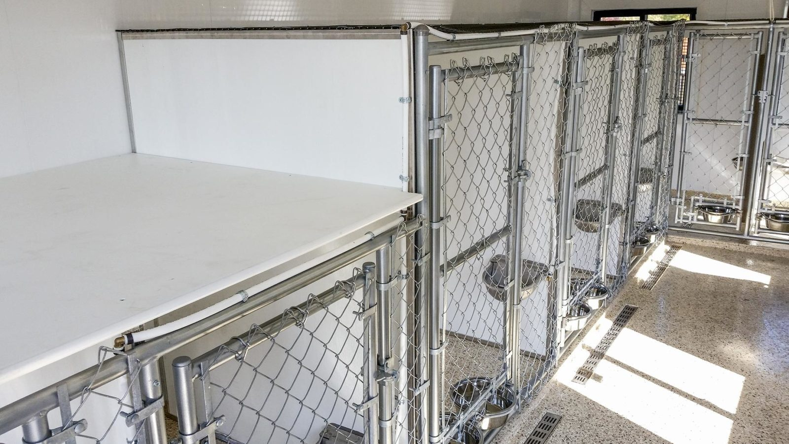 choose a kennel that's easy to clean