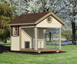 8x10 quality dog kennel