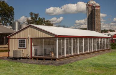 20x60 12 box kennel